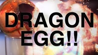 getlinkyoutube.com-Dragon Egg!!