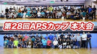 第28回 APSカップ 東京本大会 ハンドガン 2018/7/15  @東京都 淺草 マック堺 レビュー