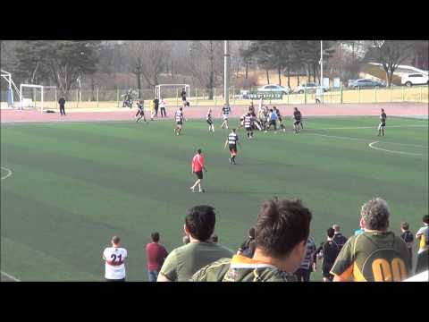 Seoul Survivors vs. Daegu Dragons - Korean Expat Rugby 10's