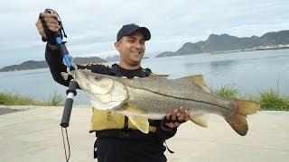 getlinkyoutube.com-Robalão de 10kg - Pesca com Caiaque - RJ