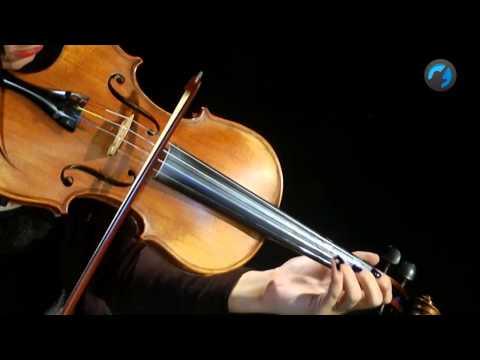 Etude - Aula T�cnica de Violino