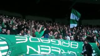 getlinkyoutube.com-Celtic Green Brigade,6 year old Boy