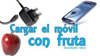 getlinkyoutube.com-Cargar el móvil o celular con fruta - Desvelando mitos (Experimentos Caseros)
