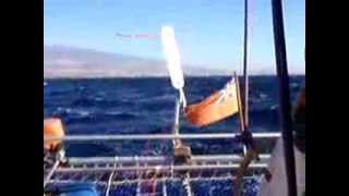 getlinkyoutube.com-Bumble Bee sailing across the Atlantic Part 1