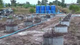 getlinkyoutube.com-รับทำระบบน้ำ เดินระบบน้ำในสวน ในแปลงเกษตร