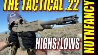 """Highs and Lows of the Tactical .22"" by Nutnfancy"