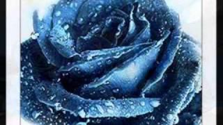 getlinkyoutube.com-Una Rosa Blu...  Michele Zarrillo