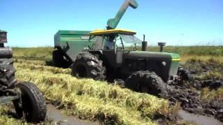 getlinkyoutube.com-cosecha de arroz en corrientes