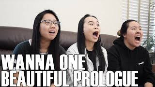 Wanna One (워너원)- Beautiful Prologue (Reaction Video)