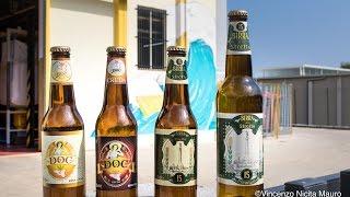 Imbottigliate le prime birre messinesi. Quattro nuovi marchi sul mercato