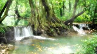 getlinkyoutube.com-เพลงบรรเลง สายธารธรรม // by ballbangpra