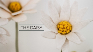 getlinkyoutube.com-Felt Flower Tutorial DIY: Daisy (simple + easy!) A Flower Making DIY How-to Video