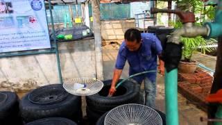 getlinkyoutube.com-ปราชญ์แม่โจ้ - ตอน การเลี้ยงกบคอนโดร่วมกับปลาดุก