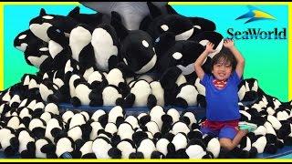 getlinkyoutube.com-SEAWORLD FAMILY FUN TRIP Shamu Show One World Water Park Kids Video Ryan ToysReview