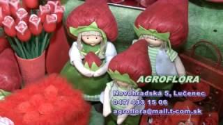 Agroflóra Lučenec 2017