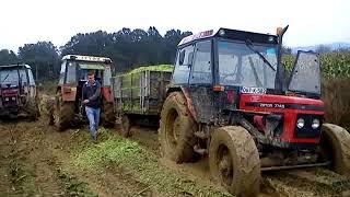 getlinkyoutube.com-ZETOR 7745 Stuck in mud 2014