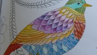 getlinkyoutube.com-Tropical wonderland colouring in (part 1)