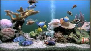 getlinkyoutube.com-Marine Aquarium 3 Deluxe - by www.arktis.de