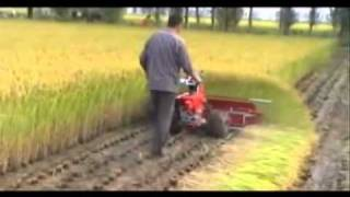 getlinkyoutube.com-WHEAT, RICE & TILLING...1 MACHINE MULTI FUNCTIONS...