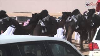getlinkyoutube.com-مسيرة البيرق / ناصر بن سعيد بن مرسان في مزاين الكويت 2015