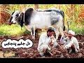 Kehri ghalti hoye hai zalim by Mansoor Malangi New Song