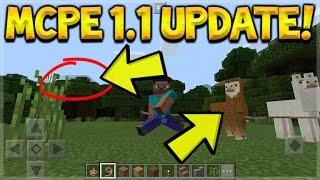 LLAMAS IN MCPE 1.1 UPDATE!! Minecraft Pocket Edition LLAMAS & WOODLAND MANSION (MCPE 1.1 UPDATE)