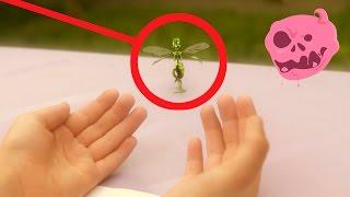 getlinkyoutube.com-A Real Fairy Found  : a comedy sketch