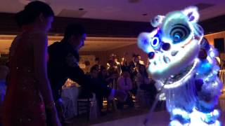 Sifu's Wedding Lion Dance