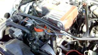 getlinkyoutube.com-86 mustang explorer motor tfs 1 cam gt40p heads flowmaster