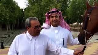 getlinkyoutube.com-تركي بن محمد الأحمد السديري يحكي قصة عن والده..