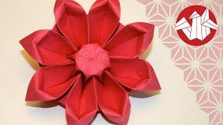 getlinkyoutube.com-Origami Fleur: Gerbera - Flower Origami: Gerbera [Senbazuru]