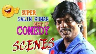 Salim Kumar Comedy Scenes | Nonstop Comedy | Malayalam Comedy Scenes | Best Of Salim Kumar