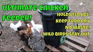 150 lb. Automatic Chicken Feeder!