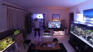 getlinkyoutube.com-My living fishroom with Malawi cichlids 500 gallons of tank ! Thank U all for Likes !!!! Thank 4 sub