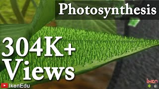 getlinkyoutube.com-Photosynthesis and Transportation in Plants