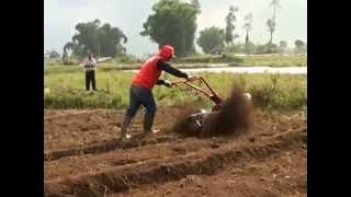 getlinkyoutube.com-Cultivator pembuat bedengan untuk lahan Sayur sayuran
