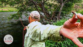 getlinkyoutube.com-Deschutes River Fly Fishing  by Todd Moen