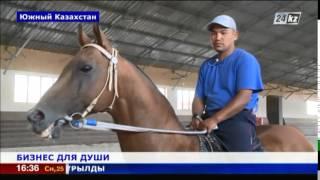 getlinkyoutube.com-Элитные породы лошадей разводят в Южном Казахстане