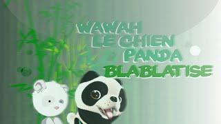 getlinkyoutube.com-wawah Le chien panda !Blablatisé!