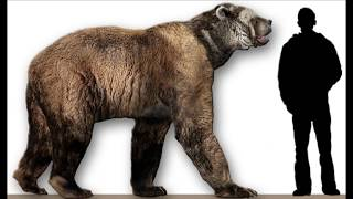 getlinkyoutube.com-Bear Attacks, Largest and Scariest! How Deadly?  World's Greatest Animals