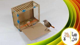 getlinkyoutube.com-كيف تصنع صيادة عصافير