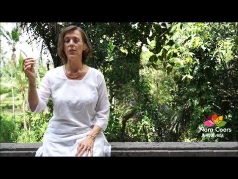 N E W: Ayurvedic cleanse or Ama reducing diet by Nora Coers Ayurveda