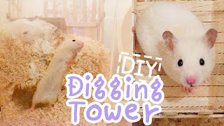 getlinkyoutube.com-Digging Tower ☆HAMSTER DIY☆