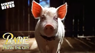 """getlinkyoutube.com-""""Babe: Pig in the City"""" - Official Trailer"""