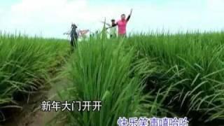 getlinkyoutube.com-988 《新春花开齐欢畅》Chinese New Year Song