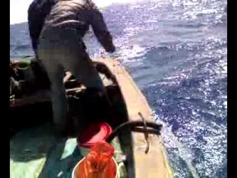 صيد التونة ( فريق شراغيش اسكندرية ) Fishing Tuna 3