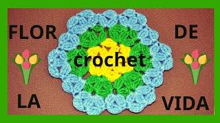 getlinkyoutube.com-Como tejer la Flor De La Vida en tejido crochet tutorial paso a paso.