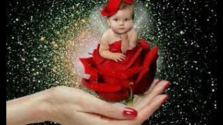 getlinkyoutube.com-اجمل وردة في العالم#The most beautiful rose in the world