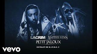 Petit jaloux (ft. Maître Gims)