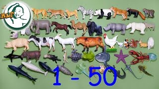 getlinkyoutube.com-Learn to count to 50 with Tomy zoo animal 2015